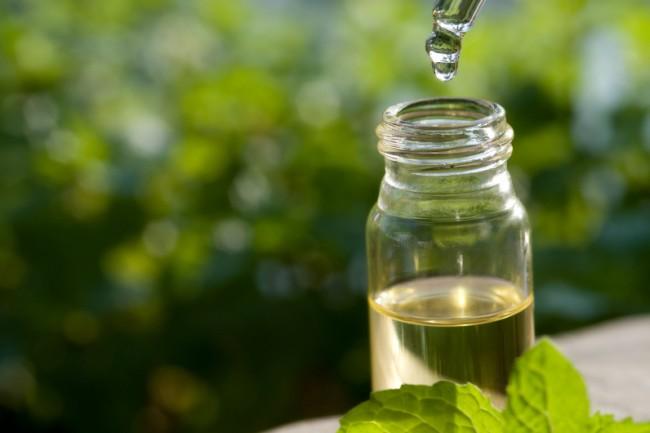 arbatmedžio aliejus