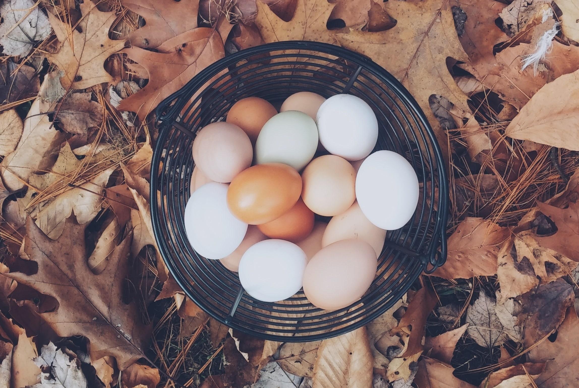 Baltymai - jų svarba organizme, biologinė vertė ir maisto šaltiniai